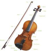 violinparts